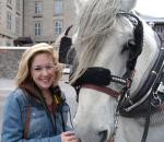 Making friends with the draft horses outside the Notre Dame Basilica in Montreal, Canada.